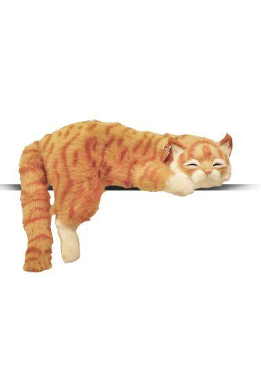 Katt Sovande Viftar med Svans och Låter