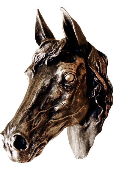 Häst Huvud Vägg