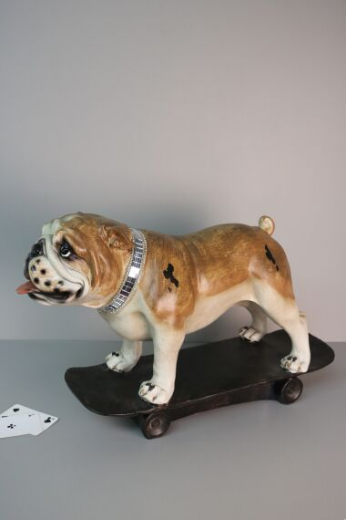 iOne Art Dog on Skateboard