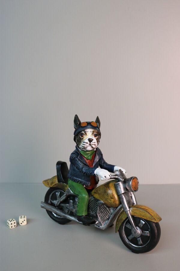 iOne Art Motorbike Dog