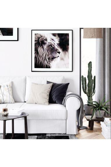 Tavla i Glas Lion Profile