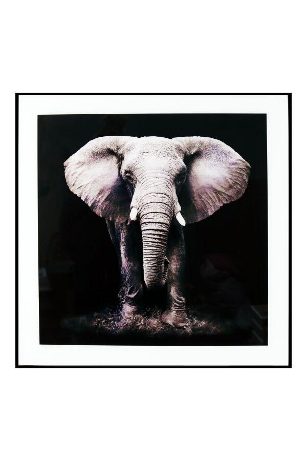 Tavla i Glas Elefant