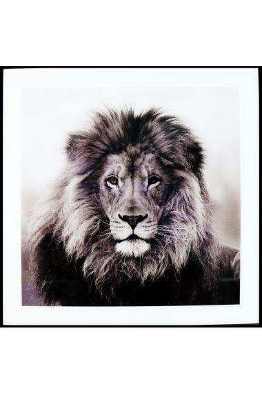 Tavla i Glas Lion