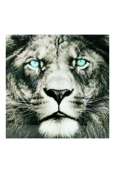 Tavla i Härdat Glas Big Lion