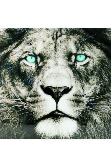 Tavla i Härdat Glas Lion