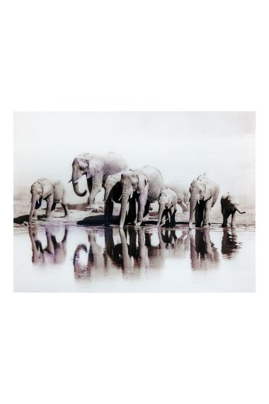 Tavla i Härdat Glas Elefants