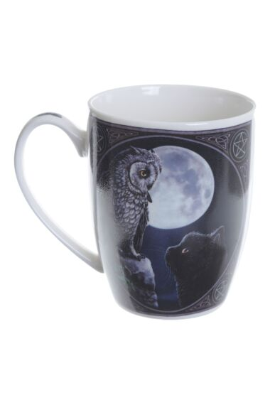 Lisa Parker Purrfect Wisdom Owl and Cat Mug