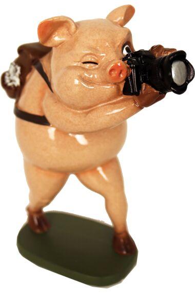 Gris Paparazzi Funny Pig