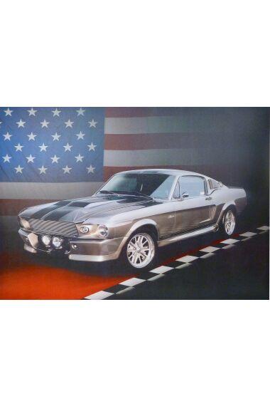 Tavla Canvas American Mustang