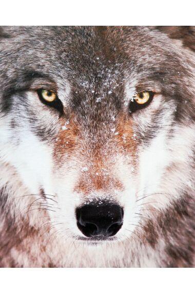 Tavla Canvas Wolf