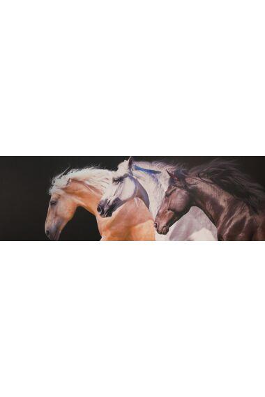 Tavla Printing Canvas Horse