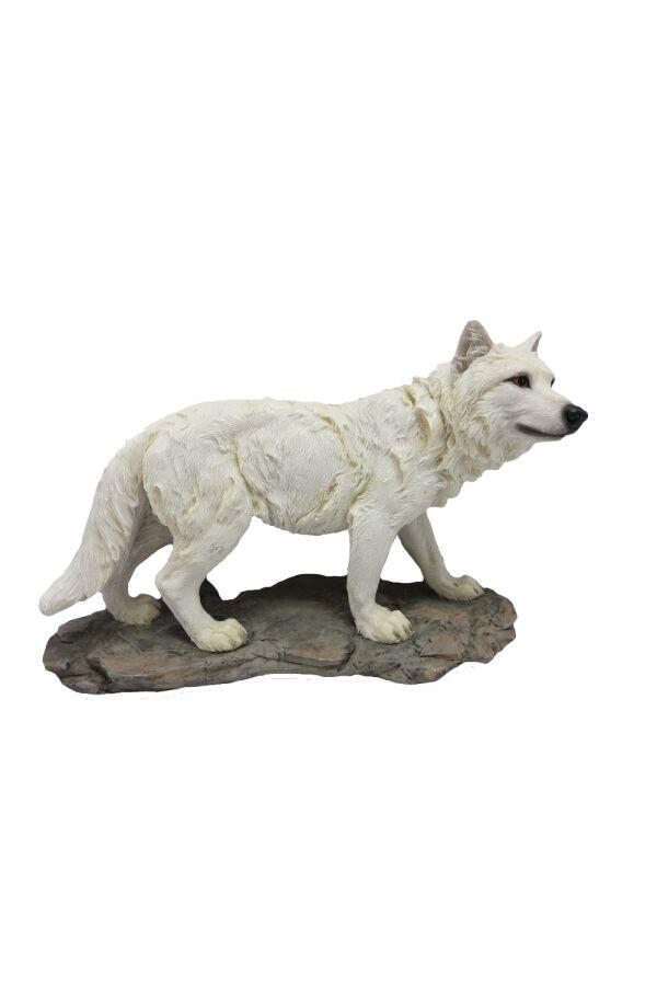 Varg White Wolf